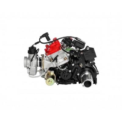 Rotax 125cc DD2 Max