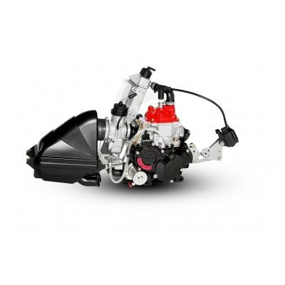 Rotax 125cc Mini Max