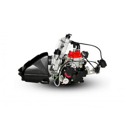 Rotax 125cc Senior Max