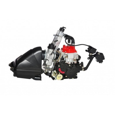 Rotax 125cc Micro Max